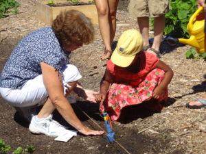 Volunteer teaching young gardener how to plant seeds
