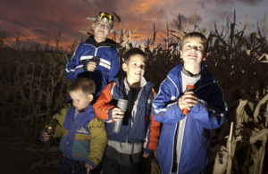 Kids with flashlights in corn maze