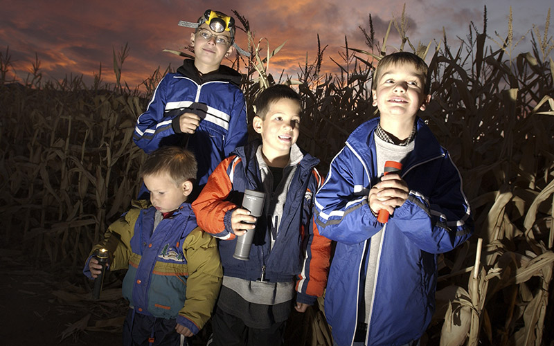 Kids in corn maze pointing flashlights at their faces