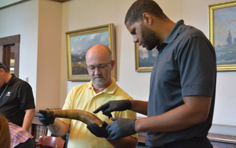 Examining collections