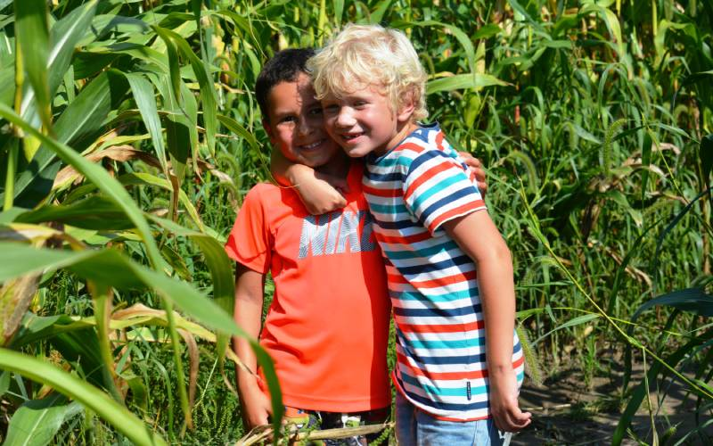 Two boys embracing just outside of corn maze