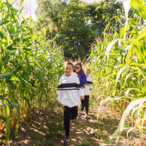 kids running in corn maze