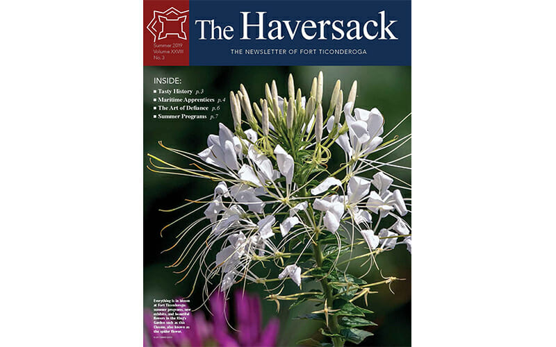 summer Haversack cover of a flower